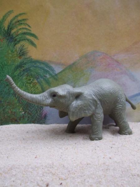 Trompetendes Elefantenjunges - 3