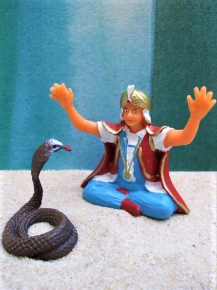 Schlangenbeschwörer ... mit brauner Kobra