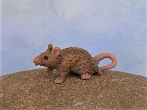 Graues Mäuschen - Serie 'Mikro Tiere'