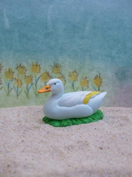 Brütende weiße Ente - 1