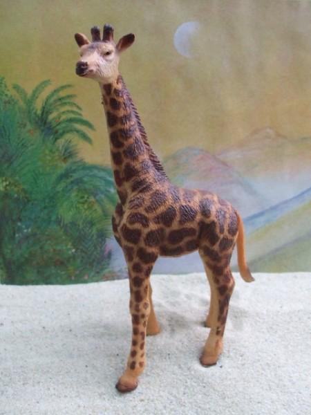 Größere Giraffe