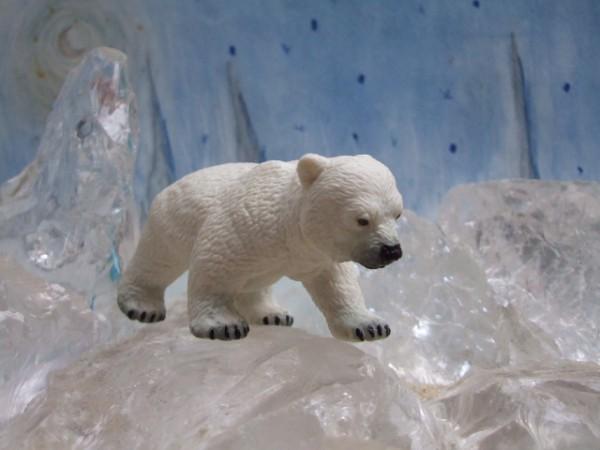 Laufendes Eisbärenjunge