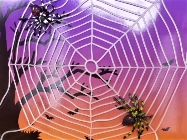 Spinnennetz mit Spinnen