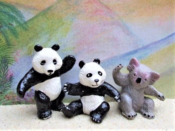 Jungtiere: Pandabären & Koalabär