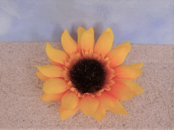 Sonnenblumen-Blüte - gelb/orange