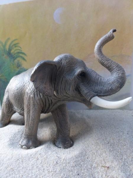 Indischer Elefantenbulle