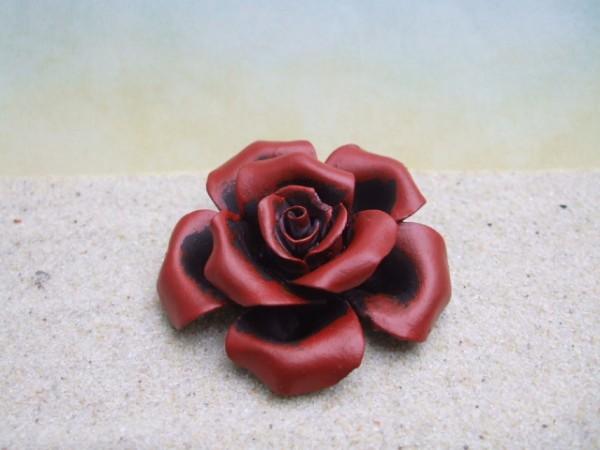 Rosenblüte - dunkelrot