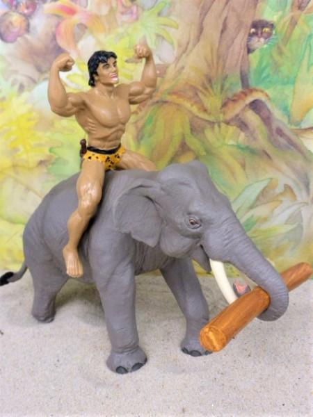 'Tarzan' ... reitet auf Elefant