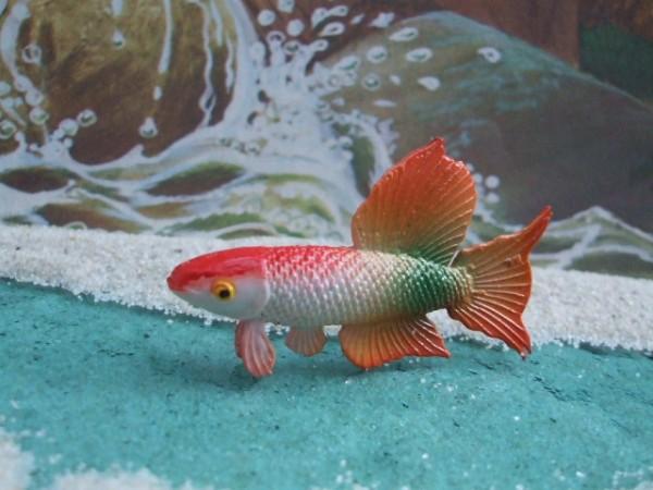 Elastolin: Kleiner Kampffisch