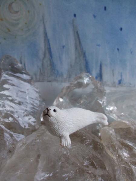 Weißes Seehundbaby - 2