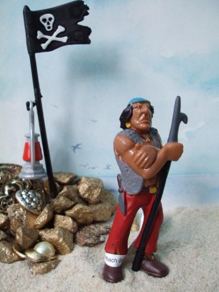 Pirat: Wächter