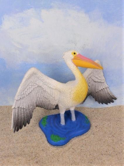 Pelikan ... mit ausgestreckten Flügeln
