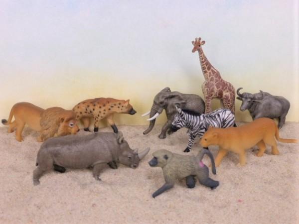 Röhre: Südafrika - Serie 'South African Animals'
