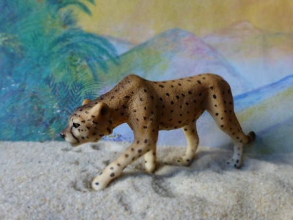 Gepard - schleichend