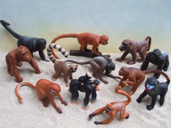 Röhre: 'Little Apes'