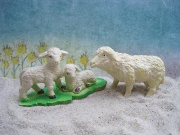 Weißes stehendes Schaf & Lämmer auf Wiese
