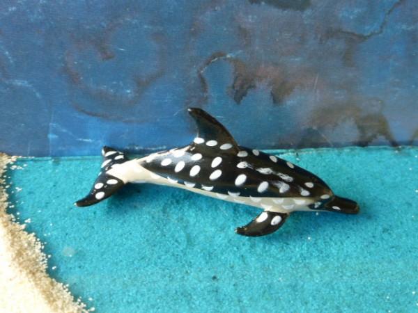 Kleiner Fleckendelfin