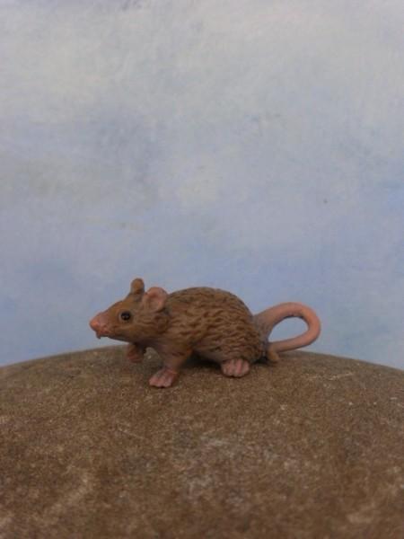 Micro - Graues Mäuschen