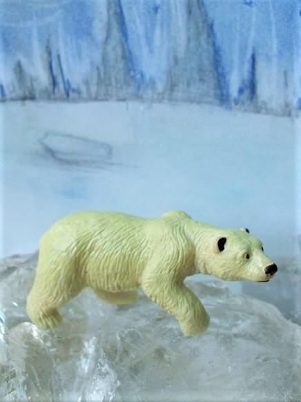 Zierlicher Eisbär