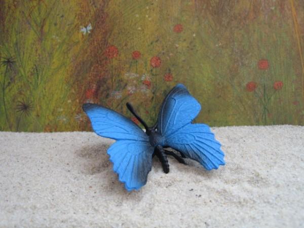 Schmetterling 'Blauer Morpho'