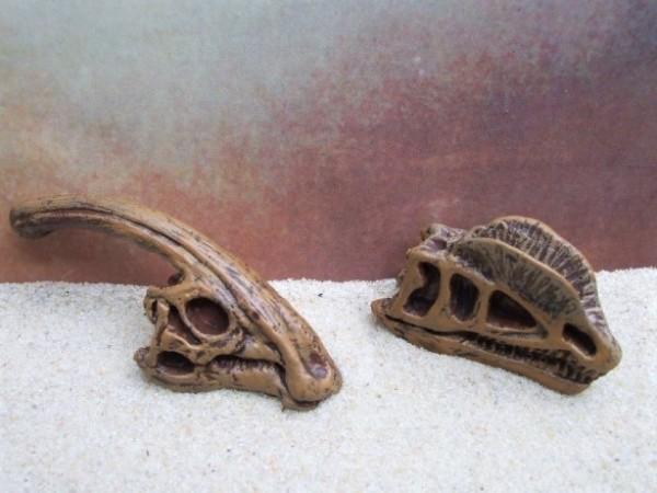 'Dino Skulls' - Parasaurolophus & Dilophosaurus