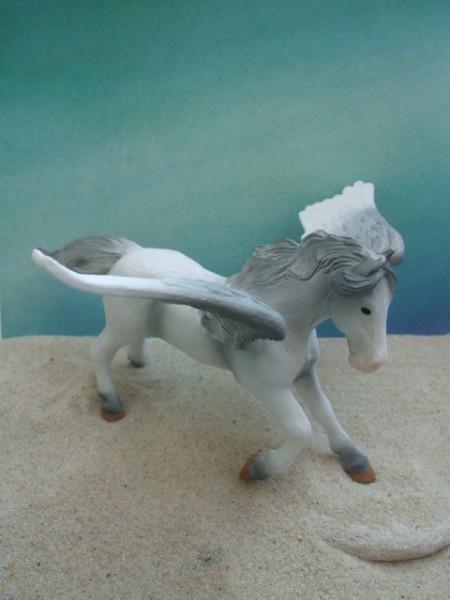 'Pegasus' - groß