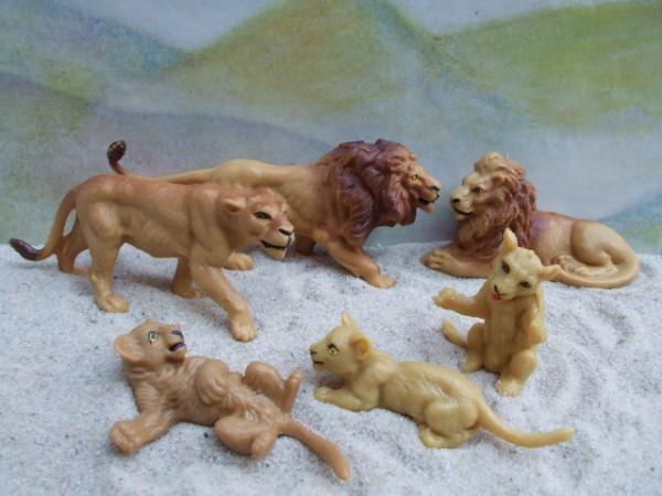 Marolin: Löwenfamilie & Angreifender Rivale