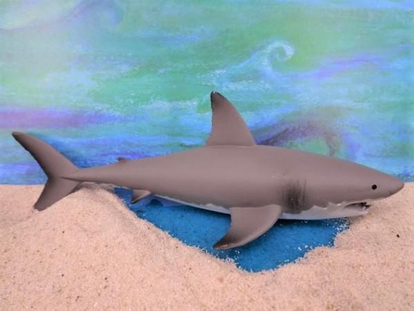 Weißer Hai - L
