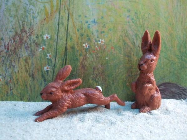 Rennender Hase & Neugieriger Hase