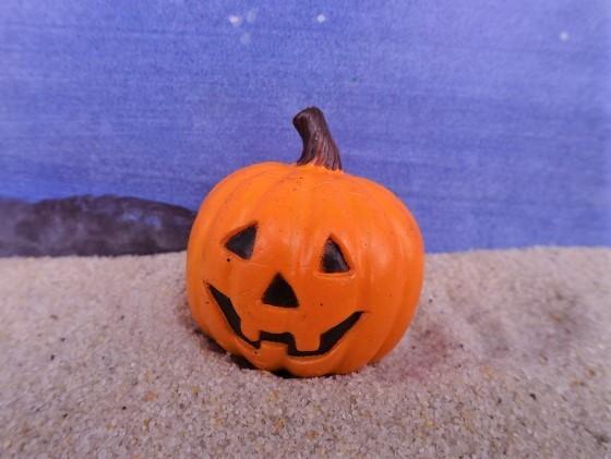 Kürbis 'Halloween' ... mit schwarzem Gesicht