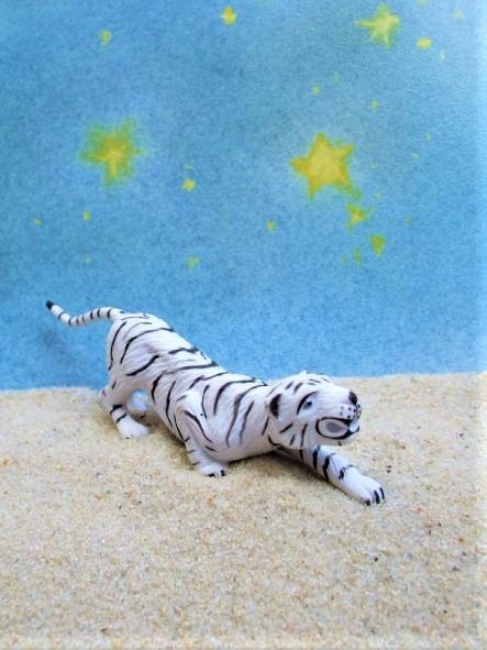 Weißer Tiger... sprungbereit - 'Circus Mondolino'