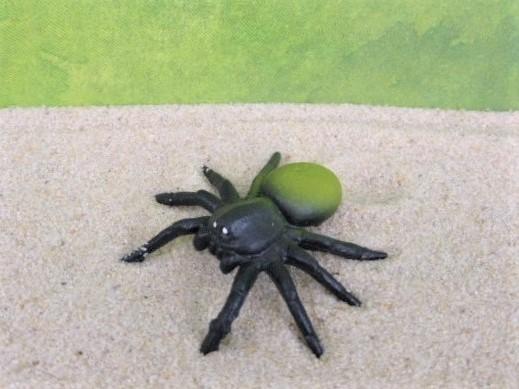 Spinne - gelb/grün