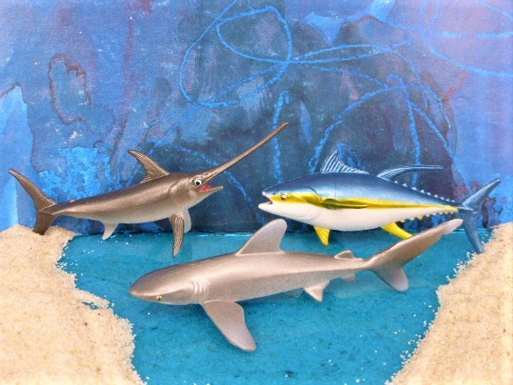 Schwertfisch & Thunfisch & Weißspitzenhai