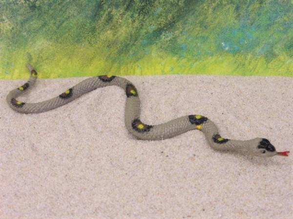 'Klapperschlange' / Schlange in Bewegung - züngelnd