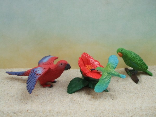 'Little Exotic Birds' - Kolibri mit Blüte & 2 Papageien