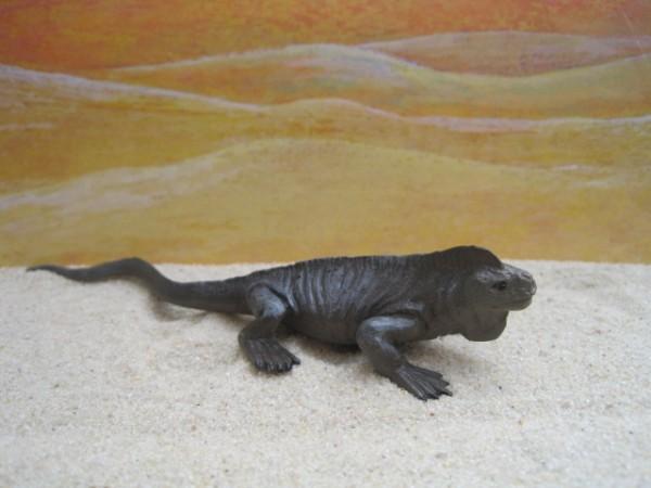 Dunkelgrüner Leguan